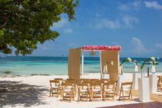 The beach at #DreamsSandsCancun offers a gorgeous tree, which adds a unique touch to your ceremony!