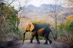 Lonely Planet's Best in Travel 2014 - Top 10 Countries: #5 Malawi
