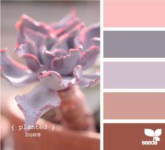 811 Best Colormyworld Images Paint Colors Combination Colors