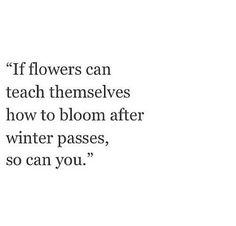Via @SummerDreamz on Tumblr