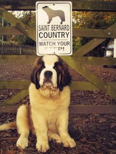 St. Bernard Country - we need a sign like this, but for a mastiff.