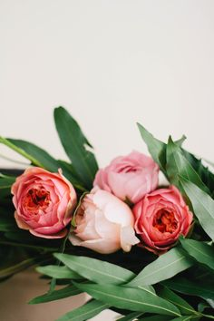 Roses all in a row.   Photography: Kate Osborne Photography - kateosbornephotography.com