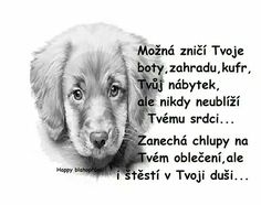 Animals And Pets, Cute Animals, Love You, My Love, Dear Friend, Quotations, Wisdom, Positivity, Techno
