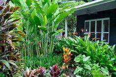 Tabu: Tropical Paradise in Cairns, Queensland Gartengestaltung Tropical Garden, Tropical Landscaping, Small Backyard Gardens, Tropical Garden Design, Tropical Backyard, Backyard Garden, Landscaping With Rocks, Balinese Garden, Australian Garden