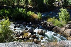 Panoramio - Photos by Larry Butcher > Stanislaus River