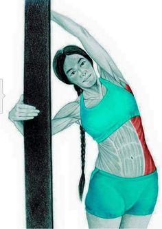 Para tener una buena zancada y no lesionarnos es fundamental que aprendas lo básico de como estirar los músculos de nuestro cuerpo que con el entrenamiento quedan apretados y necesitan un estiram…
