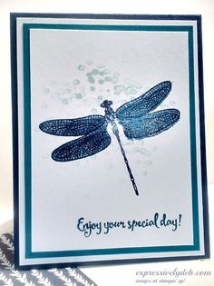 dragonfly1; Dragonfly Dreams