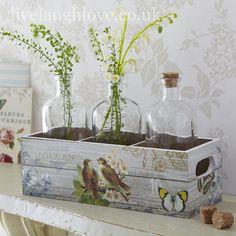 Vintage Garden Botanical Tray & 3 Glass Bottles