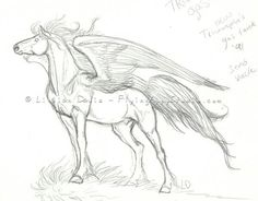 Old Sketches – Drawing Unicorns and Pegasus Before they were Cool - These are all pen and ink and pencil this is ink then tweaked with Corel Paint Shop draft for embro - Fantasy Drawings, Horse Drawings, Cute Animal Drawings, Animal Sketches, Realistic Drawings, Drawing Sketches, Art Drawings, Unicorn Drawing, Unicorn Art