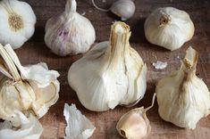 Je vous emmène découvrir l'Ail de la Drôme, une indication géographique protégée (IGP). Une culture traditionnelle et saine appréciée dans le monde entier. Olives, Garlic, Vegetables, France, Culture, Eat Healthy, Olive Oil, Cooking Recipes