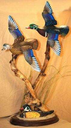 Flying Wood Ducks by FowlPlayStudiosInc on Etsy Taxidermy Decor, Taxidermy Display, Bird Taxidermy, Wood Duck Mounts, Deer Mounts, Fish Mounts, Deer Hunting Decor, Duck Hunting, Waterfowl Hunting