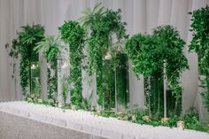 A Romantic Green and White Beverly Wilshire Wedding - International Event Company Beverly Wilshire, Event Company, Chuppah, Red Fish, Edge Design, Beautiful Gardens, Greenery, Romantic, Instagram Posts