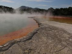 Take a closer look around Rotorua with this collection of unique local photographs. Use our image galleries to inspire and help you plan your next Rotorua trip. Us Images, Champagne, Country Roads, Explore, Exploring