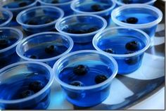 Blueberry Jello Shots for 4th of July!