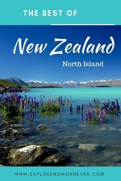 """See New Zealand North Island """"Must-Sees"""": The stunning Waitomo Glowworm caves, Wai o Tapu Thermal Wonderland Park and Maori culture Newzealdnorthisland newzealandnorthislandthingstodo newzealandnorthislanditinerary 799177896357229940 New Zealand Itinerary, New Zealand Travel Guide, Places To Travel, Travel Destinations, Places To Visit, Travel Tips, Travel Guides, Visit Australia, Australia Travel"""