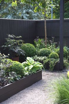 Fresh Schallschutz Zum Nachbarn Im Garten Home Ideas In 2019
