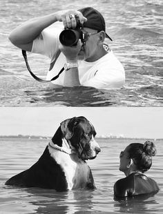 #Great #Dane. I would love to do this with Harley-Quinn
