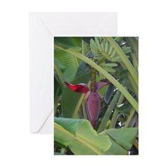 Florida Tropical Bananas Greeting Cards