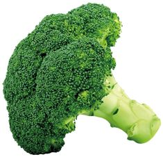 Broccoli PNG Picture