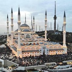 The forex market is the largest, most liquid market in the world with an average daily tra Beautiful Mosques, Islamic World, Islamic Architecture, Turkey Travel, Summer Art, Family Travel, Istanbul, Cool Girl, Taj Mahal