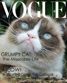 Grumpy Cat Made The Cover Of Vogue!