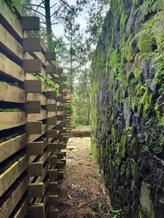 The WOOD or the STONE retaining wall? Which one would you go for? >> www.shapedscape.com ~ Landscape Architecture Matters <<