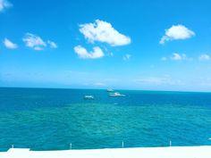 Finally I am here my dream destination  #australia #cairns #greatbarrierreef #ocean #dreamcomestrue #snorkeling #summerbreak by chihieu_266 http://ift.tt/1UokkV2