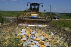 Украинские сыры запрещенные на ввоз