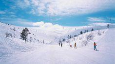Ski Lapland   VisitFinland.com