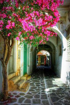 Street in Parikia, Paros, Greece