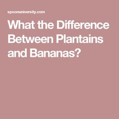 What the Difference Between Plantains and Bananas?
