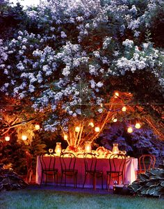 Party Time under the stars in my garden   #OKLsummer