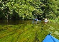 Spływ kajakiem po rzece Czarna Hańcza
