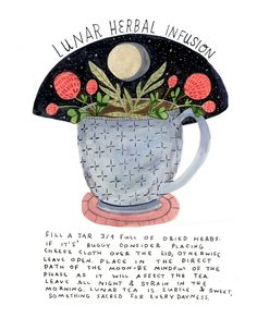 Madison Safer Illustration: Fill a jar ¾ full of dried herbs. if it's buggy. Tea Illustration, Illustrations, Wiccan Spells, Magic Spells, Witchcraft For Beginners, Herbal Magic, Baby Witch, Modern Witch, Kitchen Witch