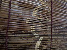 竹虎四代目がゆく!「隊列で飛ぶ竹節の鳥」 竹虎 虎斑竹専門店竹虎 竹簾 簾 すだれ 竹 竹節 bamboo taketora Bambooblind