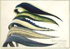 """Résultat de recherche d'images pour """"agave illustration"""""""