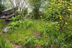 Image result for dan pearson chelsea garden