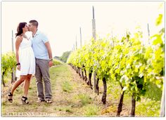 vineyard engagement photos , Long Island Engagement Photos  By Cordele Photography