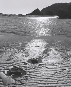 ANSEL ADAMS  1902 - 1984 At Muir Beach, California