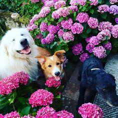 Lovely friends!