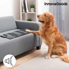 InnovaGoods InnovaGoods Pet Sonic Training Mat We present you the solution you were waiting for to train your pet, namely the InnovaGoods Home Pets pet sonic. Pets, Pet Dogs, Heated Pet Beds, Dog Gadgets, Love Your Pet, Large Animals, Dog Care, Dog Bed, Dog Cat