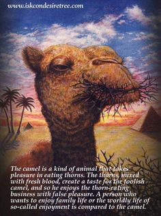 Srila Prabhupada on A Camel-Like Person