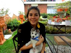 Baby Thor! Central Park, Thor, Husky, Dogs, Baby, Animals, San Carlos, Animales, Animaux