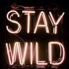 Stay wild in neon The Words, Light Up Words, Words Quotes, Me Quotes, Sayings, Drug Quotes, Statements, Neon Lighting, Inspire Me