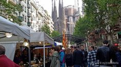 Sagrada Familia Festival -Barcelona  Click on the photo the read more and watch the 4k UHD video #Travel #videoblog #ExperienceCatalunya #Barcelona #SagradaFamilia #Spain