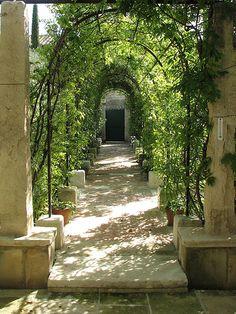 Le jardin  de Pierre Bergé (par Michel Semini)