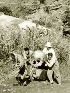 History Discover A giant mystery: 18 strange giant skeletons found in Wisconsin Unexplained Mysteries Ancient Mysteries Unexplained Phenomena Ancient Aliens Ancient History Ufo Giant Skeletons Found Nephilim Giants Creepy Unexplained Mysteries, Ancient Mysteries, Unexplained Phenomena, Ancient Artifacts, Ancient Aliens, Ancient History, Ufo, Giant Skeletons Found, Rare Animals