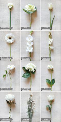 white wedding flowers | protractedgarden