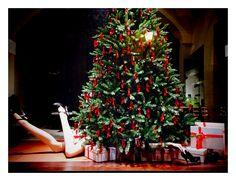 Anche la vetrina del Natale 2015 è ironica e unconventional, grazie alla nostra designer che firma ogni installazione con la sua inconfondibile classe ed estro creativo.  //  The Christmas 2015 window is ironic and absolutely unconventional. It brings the unique style and creativity flair of our designer.  #window #shop # details #xmas #christmas