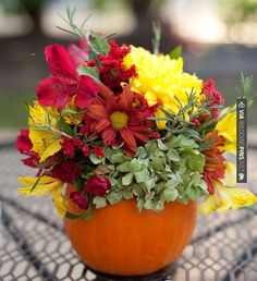Love this - Halloween wedding pumpkin centerpiece  //  alisha crossley photography | CHECK OUT MORE IDEAS AT WEDDINGPINS.NET | #weddings #rustic #rusticwedding #rusticweddings #weddingplanning #coolideas #events #forweddings #vintage #romance #beauty #planners #weddingdecor #vintagewedding #eventplanners #weddingornaments #weddingcake #brides #grooms #weddinginvitations